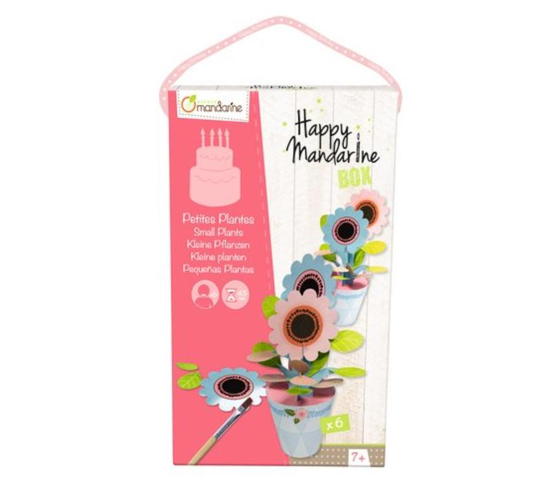 Avenue Mandarine Happy Box Kleine Bloemplantjes