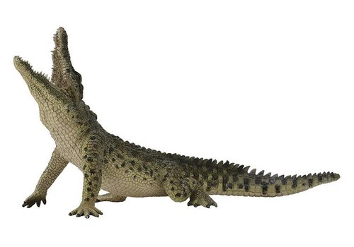 Collecta Collecta Wild Animals Nile crocodile 18 x 10 cm