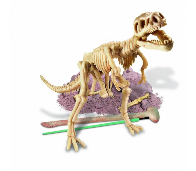 4M Kidzlabs Dinosaur Dig a Dinosaure Tyrannosaurus Rex