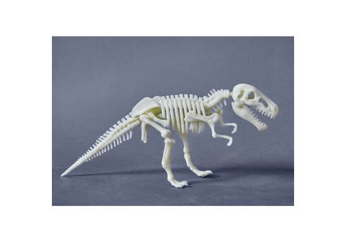 Haba Haba Terra Kids - Glow in the dark T. Rex