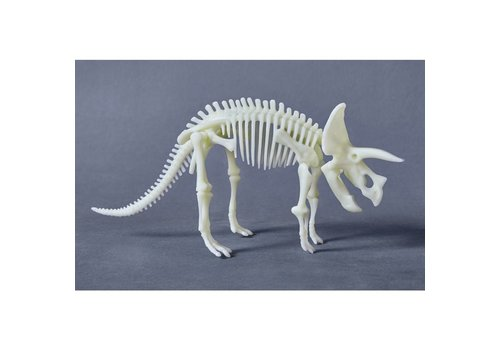 Haba Haba Terra Kids - Glow in the dark Triceratops