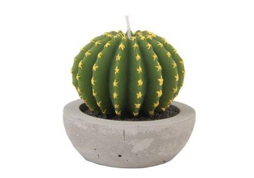 Klevering &Klevering Cactus kaars