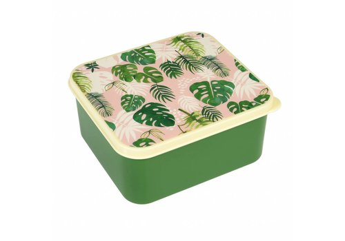 Rex International Tropical Palm Lunch Box