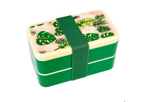 Rex International Tropical Palm Bento Box