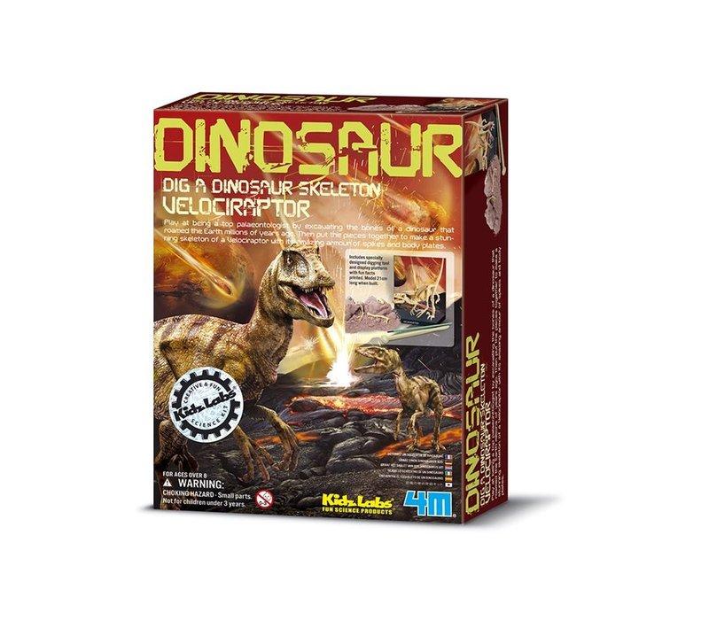 4M KidzLabs Dinosaur Dig a Dinosaur Skeleton: Velociraptor