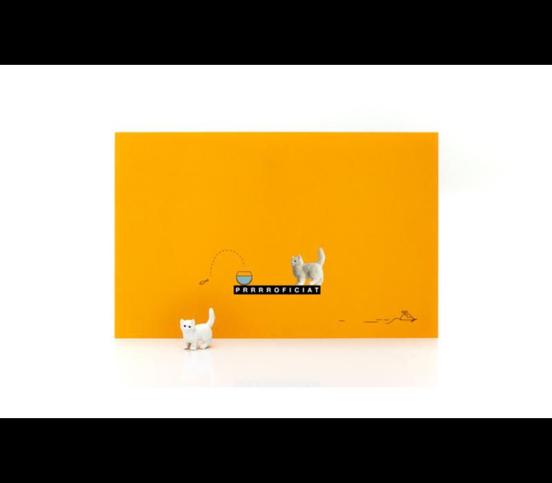 Leuke Kaartjes Greeting Card Cat Prrrroficiat