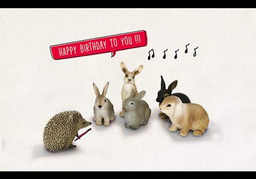 Leuke Kaartjes Leuke Kaartjes Wenskaart Egel Konijnen Happy Birthday To You!!!