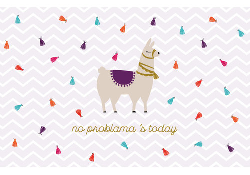 Leuke Kaartjes Leuke Kaartjes Greeting Card No Problema's Today