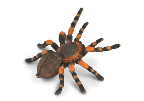 Collecta Collecta Mexican Red Knee spider 8 x 8,7 cm