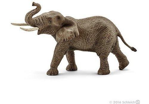 Schleich Schleich  African Elephant Male