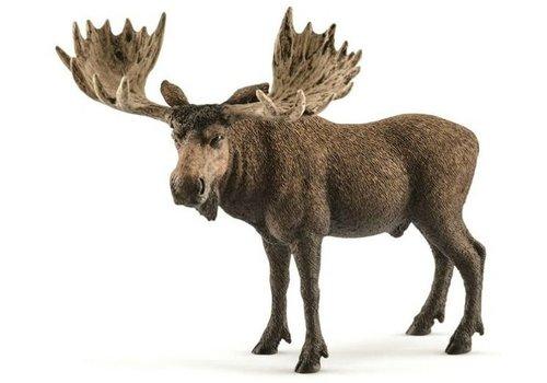 Schleich Schleich Moose Male