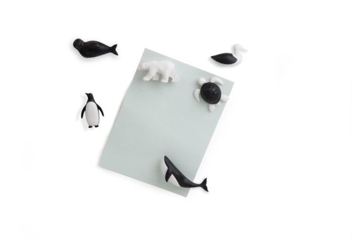 Qualy Qualy Save Ocean Magnets - set of 6 - Black/White