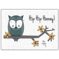 Bloom Greeting Card with Flower Seeds - Hip Hip Hooray!