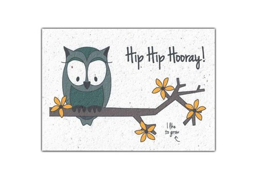 Bloom Bloom Greeting Card with Flower Seeds - Hip Hip Hooray!