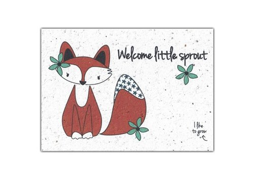 Bloom Bloom Greeting Card with Flower Seeds - Welcome Little Sprout