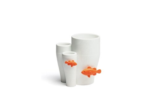 Qualy Qualy Coral Toothbrush Holder White