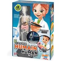 Buki The Human Body