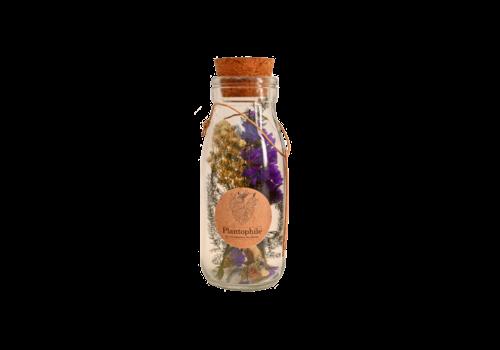 Plantophile Plantophile  Dried Flowers in Bottle M Paars/wit