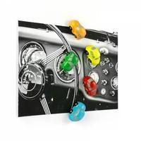Trendform Set van 5 Auto Magneten