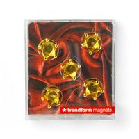 Trendform Set of 5 Royal Magnets