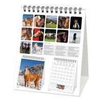 Legami Kalender 2021 Paarden