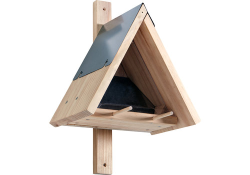 Haba Haba Terra Kids Bird Box Kit