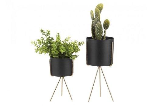Present Time Present Time Pedestal Plant Pot Set Of 2 Pcs