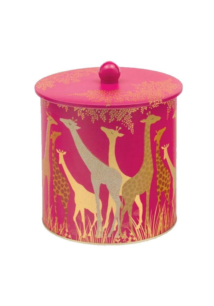 Blik - Giraffe