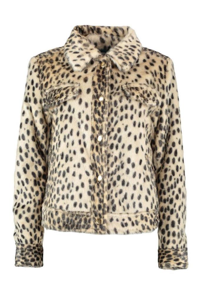 Harper & Yve Gisele - Jacket