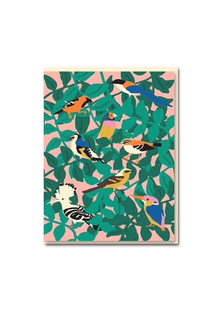 Kaart -  Birds