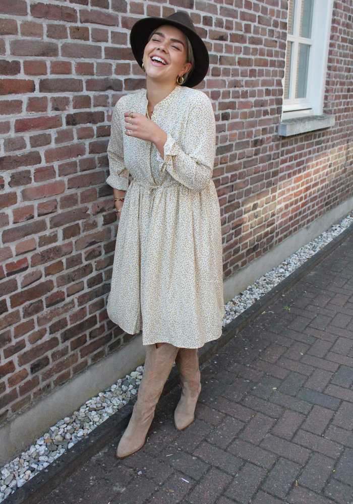 Moves - Danis Dress