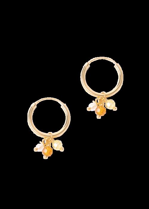 Le veer Le Veer-  Fiesta Earrings Gold (paar)