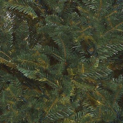 Frasier Fir -  Blauw-Groen - BlackBox kunstkerstboom
