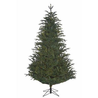 Frasier Fir - Blau-Grün - BlackBox künstlicher Weihnachtsbaum