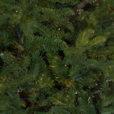 Frasier Fir - Groen - BlackBox kunstkerstboom