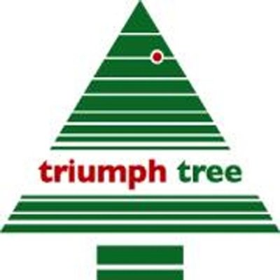Matterhorn - Blauw - Triumph Tree kunstkerstboom