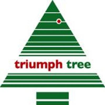Bristlecone Fir- Schwarz - Triumph Tree künstlicher Weihnachtsbaum