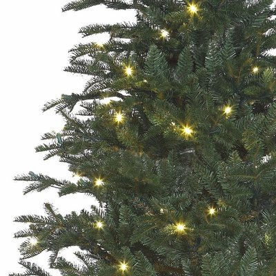Frasier Fir LED - Blauw-Groen - BlackBox kunstkerstboom