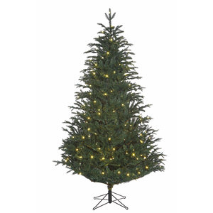 Frasier Fir LED - Blauw-Groen - BlackBox kunstkerstboom