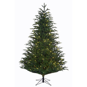 Frasier Fir LED - Groen - BlackBox kunstkerstboom