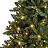 Patton Fir LED - Groen - BlackBox kunstkerstboom