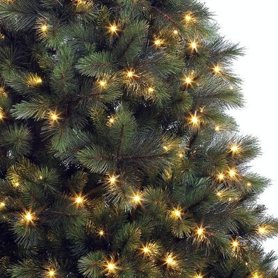 Washington Fir LED - Groen - BlackBox kunstkerstboom