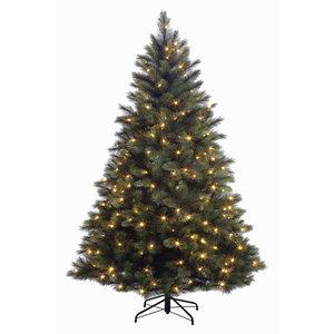 Washington Fir LED - Grün - BlackBox künstlicher Weihnachtsbaum