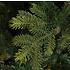 Dunville Pine - Groen - BlackBox kunstkerstboom