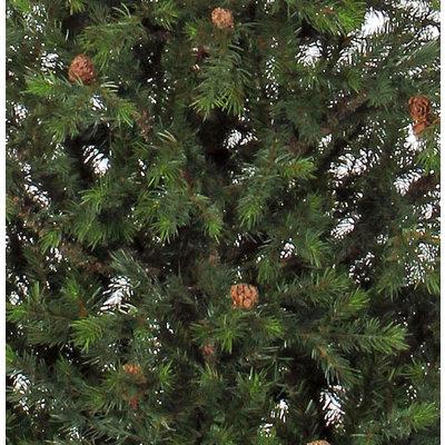 Patterson - Groen - BlackBox kunstkerstboom