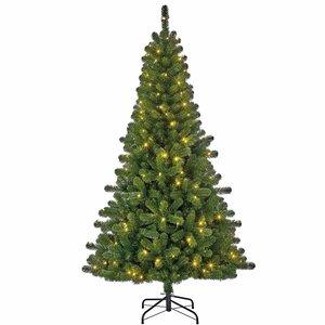 Charlton LED Slim (schmal) - Grün - BlackBox künstlicher Weihnachtsbaum