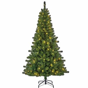 Charlton LED Slim (smal) - Groen - BlackBox kunstkerstboom