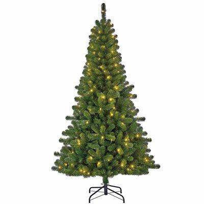 Charlton LED Slim - Groen - BlackBox kunstkerstboom