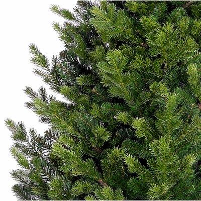 Abington - Grün - BlackBox künstlicher Weihnachtsbaum