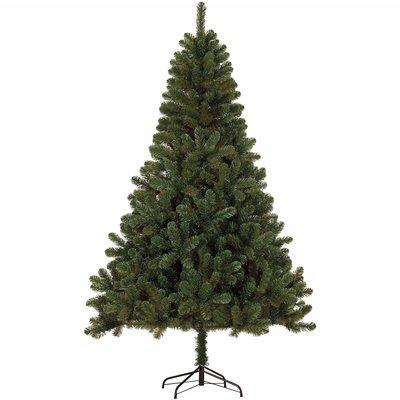 Canmore - Groen - BlackBox kunstkerstboom